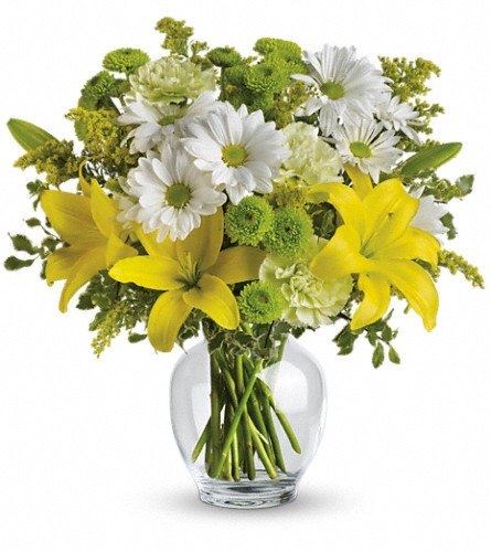 Teleflora's Brightly Blooming in Groves TX, Williams Florist & Gifts