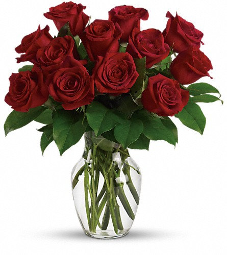 Enduring Passion - 12 Red Roses in Jersey City NJ, Entenmann's Florist