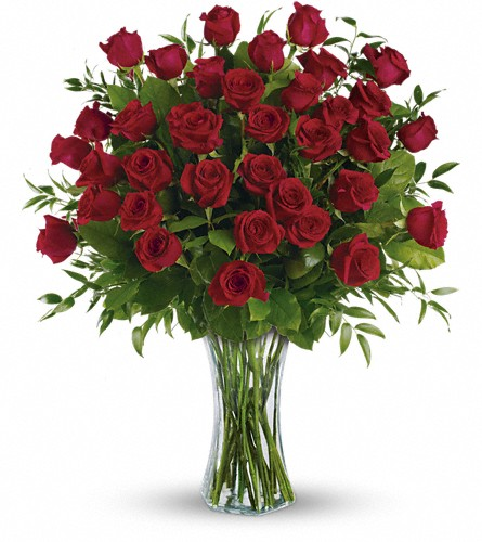 Breathtaking Beauty - 3 Dozen Long Stemmed Roses in Charlottesville VA, A New Leaf Florist