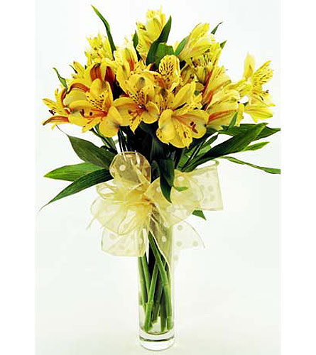 Yellow-Alstroemeria-in-Clear-Glass-Bud-Vase in San Clemente CA, Beach City Florist