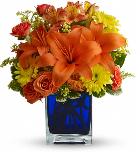 Summer Nights by Teleflora in Oak Forest IL, Vacha's Forest Flowers