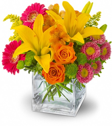 Teleflora's Summertime Splash in Oklahoma City OK, Array of Flowers & Gifts