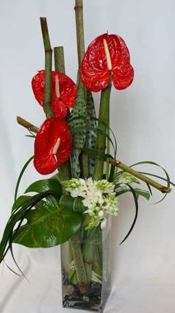 Red Charm in Victoria BC, Fine Floral Designs