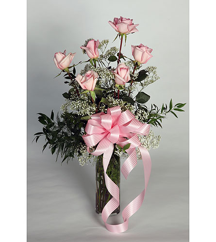6 long Stem Pink Roses Vased in Southampton PA, Domenic Graziano Flowers