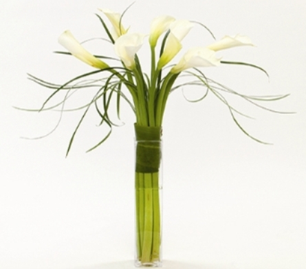 Classy Callas in Little Rock AR, Tipton & Hurst, Inc.