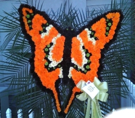 Butterfly in Freehold NJ, Especially For You Florist & Gift Shop