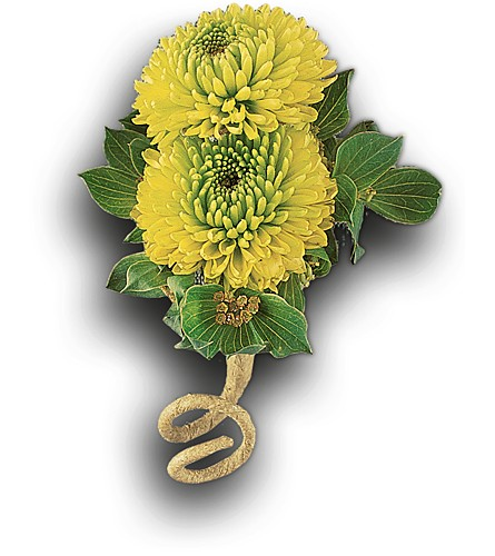Chartreuse Chrysanthemum Boutonniere in Orlando FL, Harry's Famous Flowers