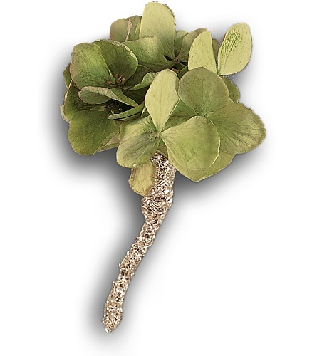 Green Hydrangea Boutonniere in Albany NY, Emil J. Nagengast Florist