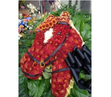 Horse in Freehold NJ, Especially For You Florist & Gift Shop