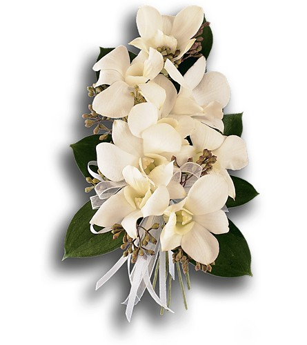 White Dendrobium Corsage in Orlando FL, Harry's Famous Flowers