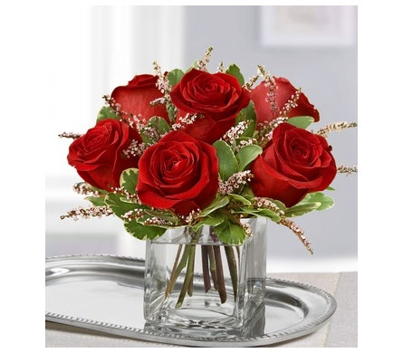 Rose Romance - Choose Your Color in Bradenton FL, Ms. Scarlett's Flowers & Gifts