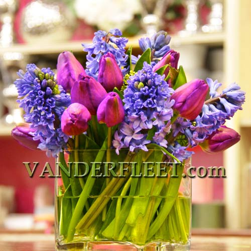Spring Passion Floral Design in Etobicoke ON, VANDERFLEET Flowers