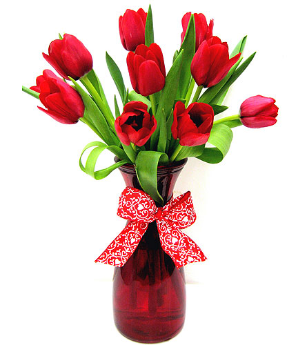 FF139 ''Tulips with Love'' in Oklahoma City OK, Array of Flowers & Gifts