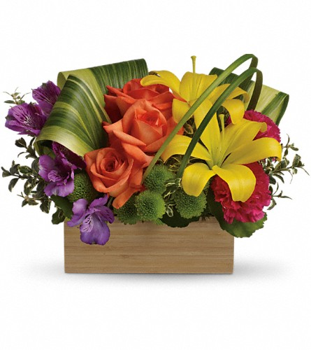 Teleflora's Shades Of Brilliance Bouquet in Rochester NY, Red Rose Florist & Gift Shop