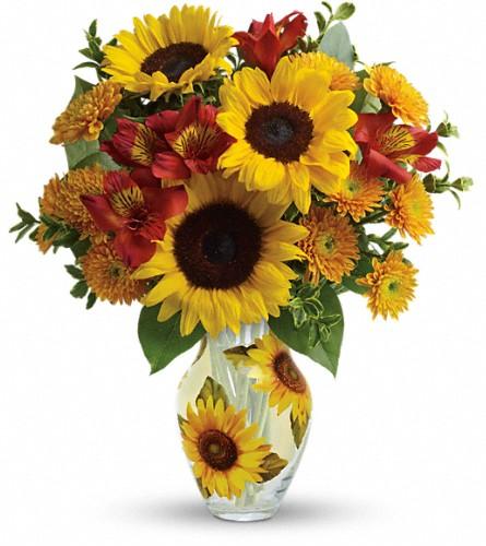 View Larger. Teleflora's Simply Sunny Bouquet in Longview TX, Casa Flora Flower Shop