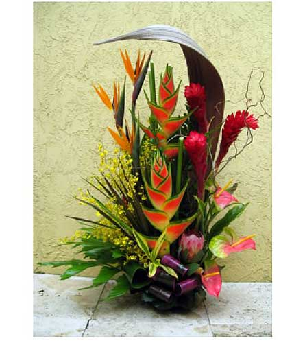 Lush Tropical in San Antonio TX, Allen's Flowers & Gifts