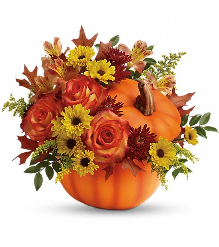 Teleflora's Warm Fall Wishes Bouquet in Northumberland PA, Graceful Blossoms
