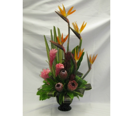 Tropical Galore in Kitchener ON, Camerons Flower Shop