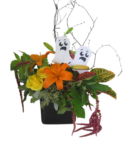 Get Your Spook On in Grand Rapids MI, Kennedy's Flower Shop