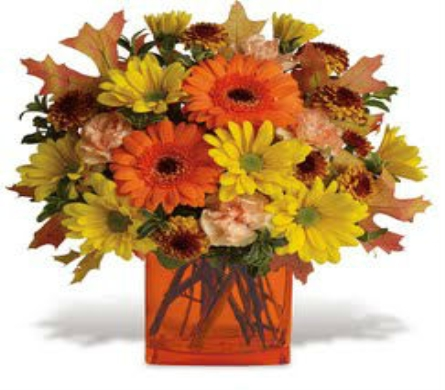 Fall Fashion in Big Rapids MI, Patterson's Flowers, Inc.