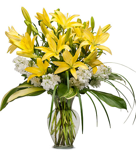 Lilies and Stock in Fort Worth TX, TCU Florist