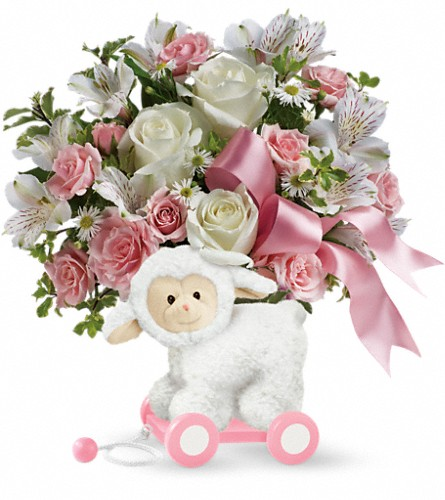 Teleflora's Sweet Little Lamb - Baby Pink in San Bruno CA, San Bruno Flower Fashions