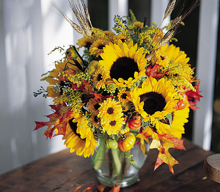 Fall Sunflowers in Little Rock AR, Tipton & Hurst, Inc.
