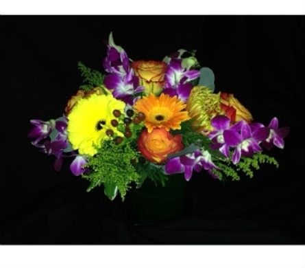 Fall Cube with Purple Orchids in Dallas TX, Z's Florist