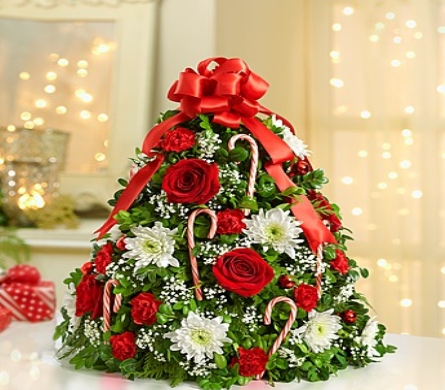 HOLIDAY BOXWOOD TREE in Vienna VA, Vienna Florist & Gifts