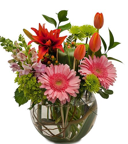 Splendor Surprise in Sault Ste Marie MI, CO-ED Flowers & Gifts Inc.