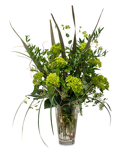 Natural Green in Amherst NY, The Trillium's Courtyard Florist