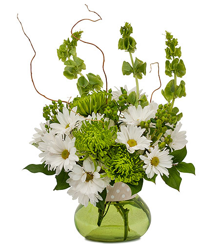 Dots and Daisies in Exton PA, Blossom Boutique Florist