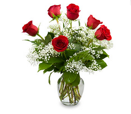Half-Dozen Red Roses with baby's breath in Little Rock AR, Tipton & Hurst, Inc.