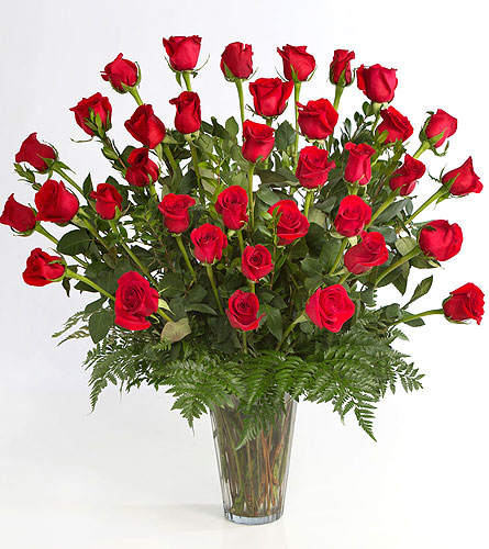 3 Dozen Red Roses Arranged in Little Rock AR, Tipton & Hurst, Inc.