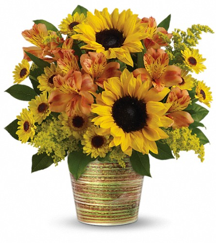 Teleflora's Grand Sunshine Bouquet in Maple ON, Irene's Floral