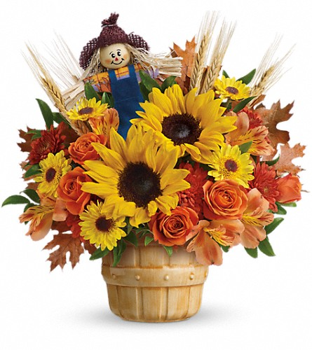 Teleflora's Smiling Scarecrow Bouquet in Royersford PA, Three Peas In A Pod Florist