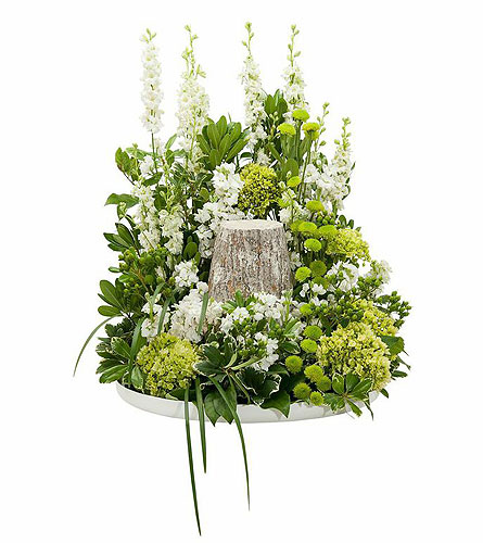 Elegance Surround in Weymouth MA, Bra Wey Florist