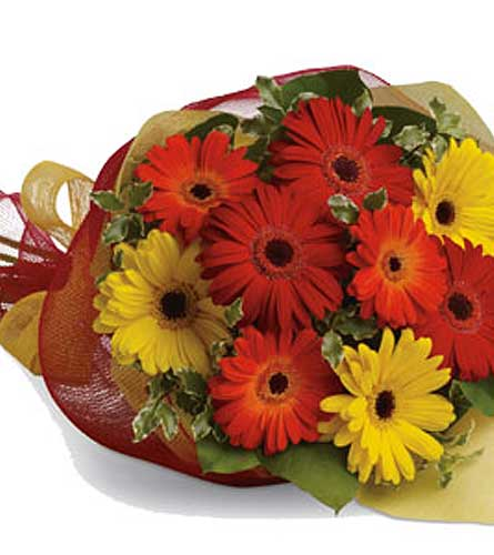 Mixed Gerbera Bouquet in Summerside PE, Kelly's Flower Shoppe