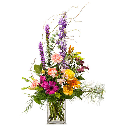Fresh Picked in Schaumburg IL, Deptula Florist & Gifts