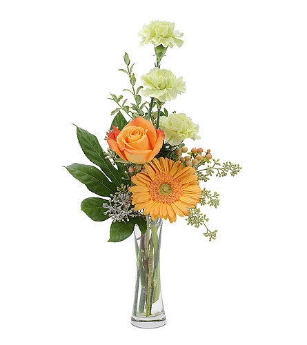 Orange U Glad in Spartanburg SC, A-Arrangement Florist
