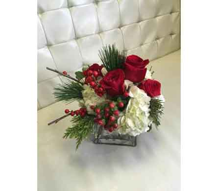 Christmas Cheer in Rogers AR, Shirley's Flower Studio