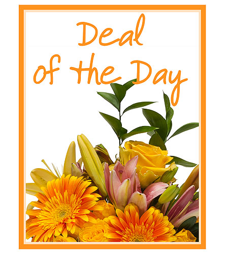 Deal of the Day in Sapulpa OK, Neal & Jean's Flowers & Gifts, Inc.