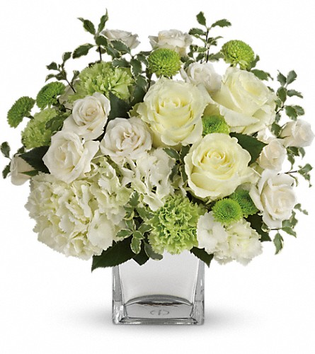 Teleflora's Shining On Bouquet in Rochester NY, Red Rose Florist & Gift Shop