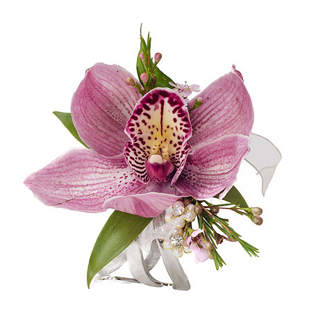 Single Cymbidium Orchid Wrist Corsage in Little Rock AR, Tipton & Hurst, Inc.