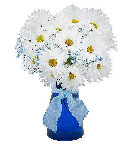 Baby Blue in Timmins ON, Timmins Flower Shop Inc.