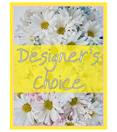Designer's Choice - New Baby in Edmonton AB, Flowers By Merle