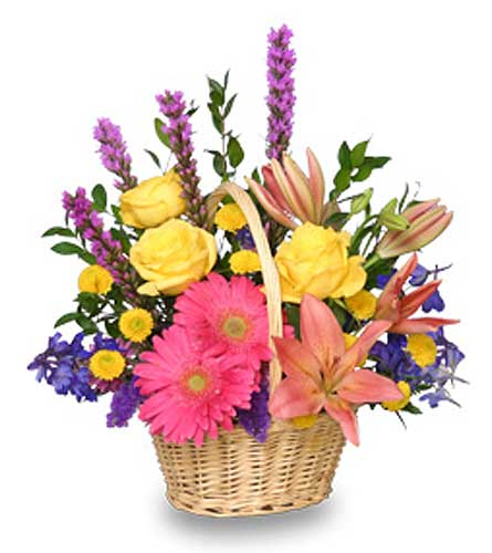 HAVE A SUNNY DAY! in Sayville NY, Sayville Flowers Inc