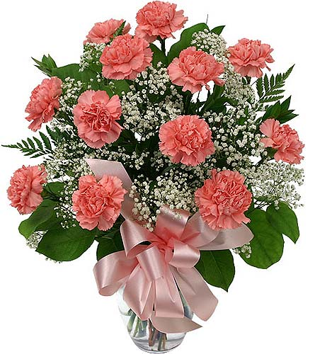 Dozen Pink Carnations in Timmins ON, Timmins Flower Shop Inc.