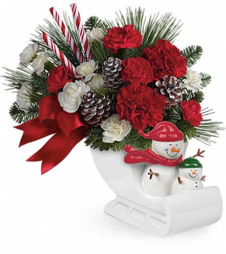 Send a Hug Open Sleigh Ride by Teleflora in Royersford PA, Three Peas In A Pod Florist