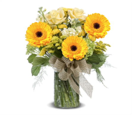 SUMMER EXPRESSIONS in Gainesville FL, Floral Expressions Florist